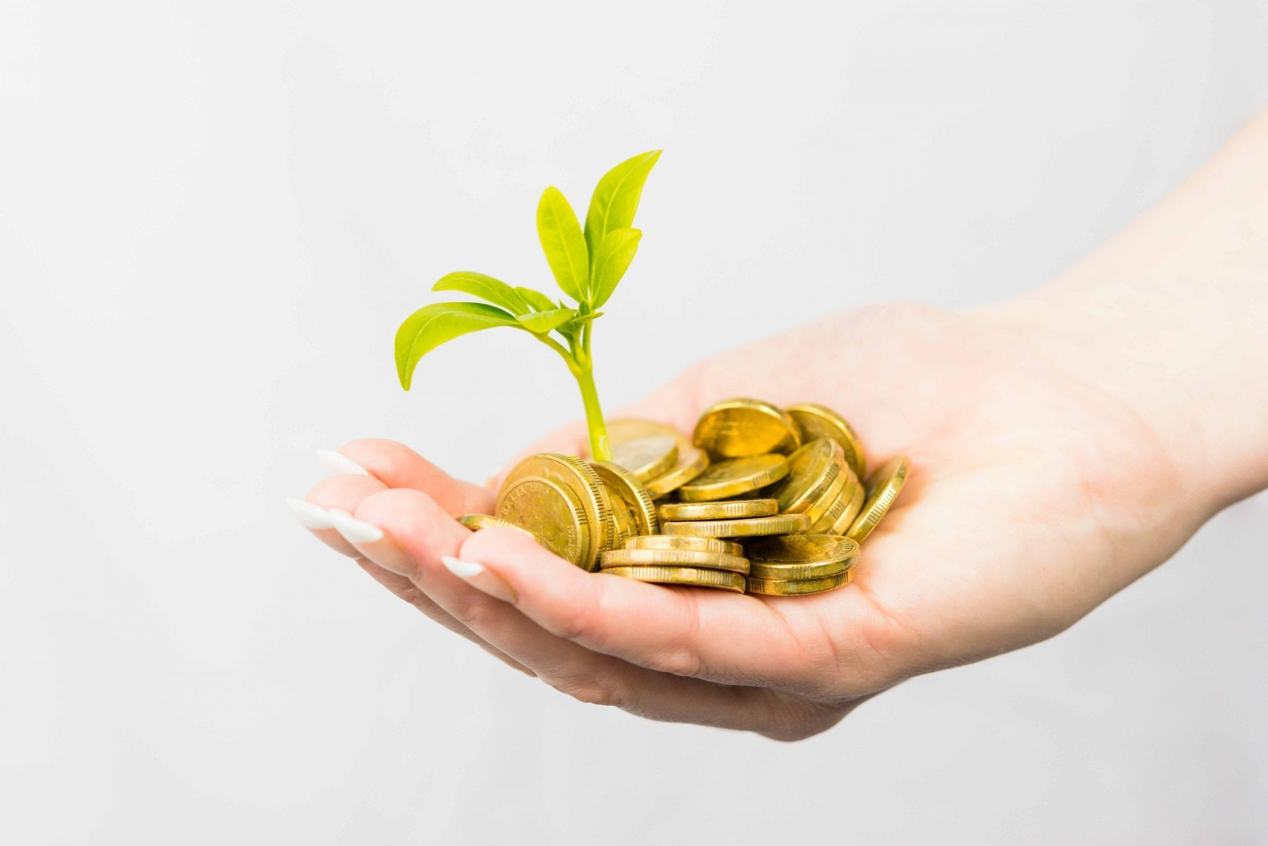 Superannuation Mackay - hand holding gold coins with plant sprouting from them to indicate growing your super