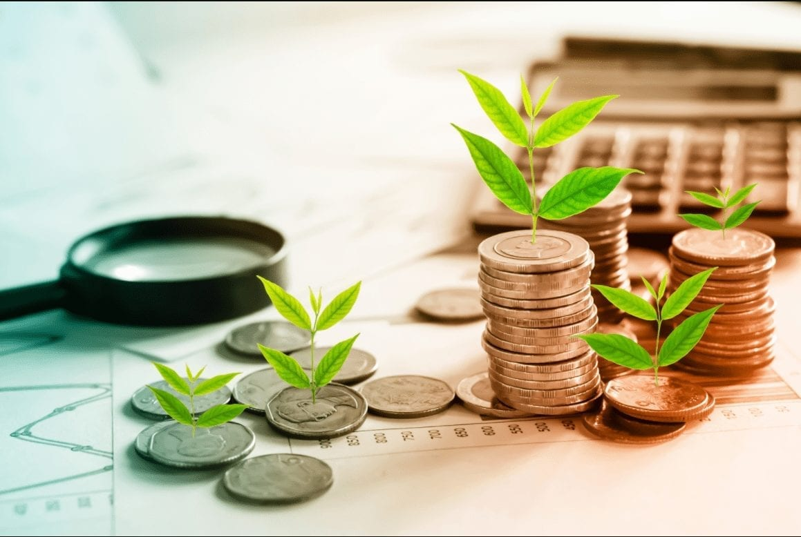 Financial Planning mackay - Plants sprouting from coins to indicate growing wealth